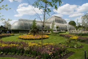 RBG Kew Palm House
